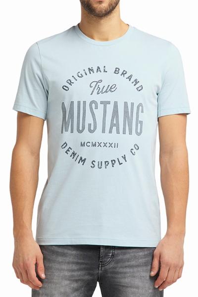 Мужская футболка серо голубого цвета